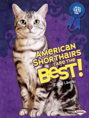cover image of American Shorthairs Are the Best!