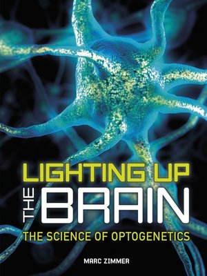 cover image of Lighting Up the Brain