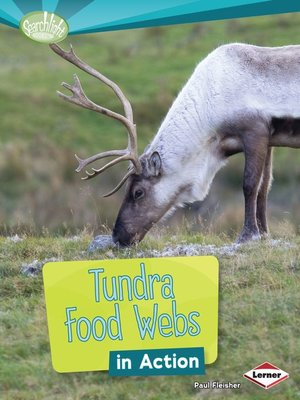 cover image of Tundra Food Webs in Action