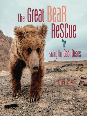 cover image of The Great Bear Rescue