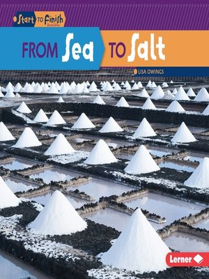 cover image of From Sea to Salt