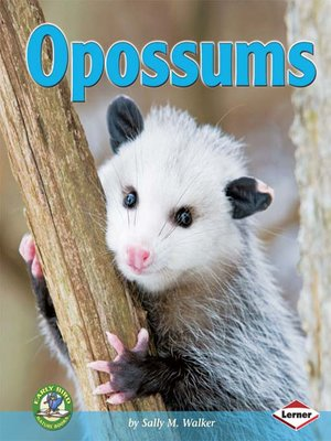 cover image of Opossums