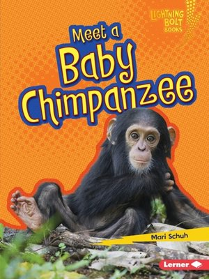 cover image of Meet a Baby Chimpanzee
