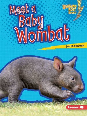 cover image of Meet a Baby Wombat