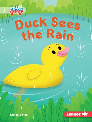 cover image of Duck Sees the Rain