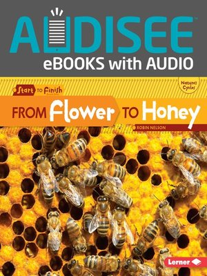 cover image of From Flower to Honey