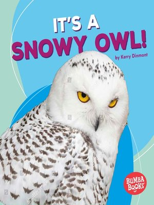 cover image of It's a Snowy Owl!