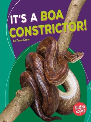 cover image of It's a Boa Constrictor!