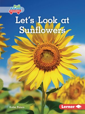 cover image of Let's Look at Sunflowers