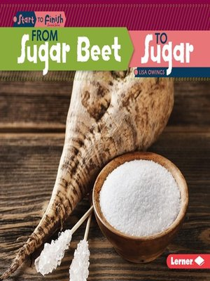 cover image of From Sugar Beet to Sugar