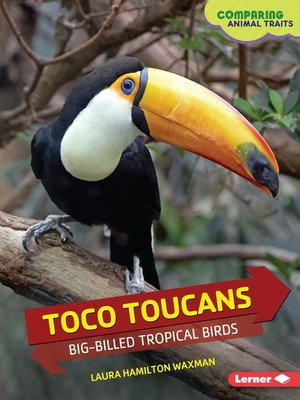 cover image of Toco Toucans