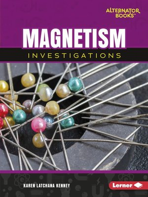 cover image of Magnetism Investigations