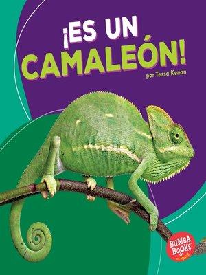 cover image of ¡Es un camaleón! (It's a Chameleon!)
