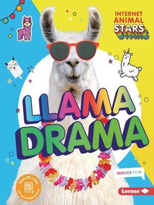 cover image of Llama Drama
