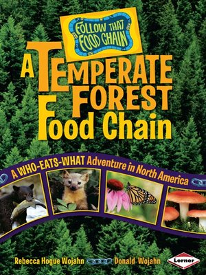 cover image of A Temperate Forest Food Chain