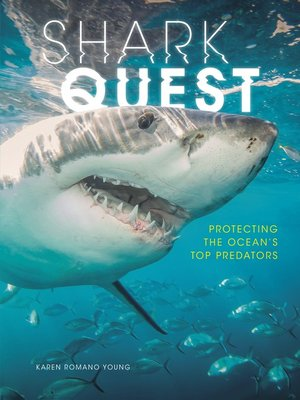 cover image of Shark Quest