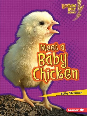 cover image of Meet a Baby Chicken