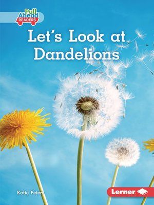 cover image of Let's Look at Dandelions