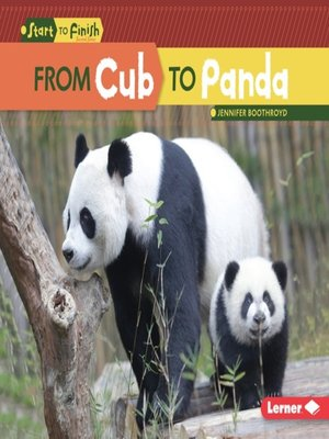 cover image of From Cub to Panda