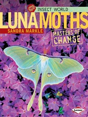 cover image of Luna Moths