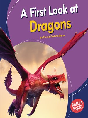 cover image of A First Look at Dragons