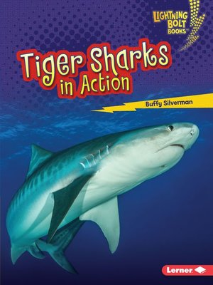 cover image of Tiger Sharks in Action