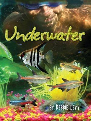 cover image of Underwater