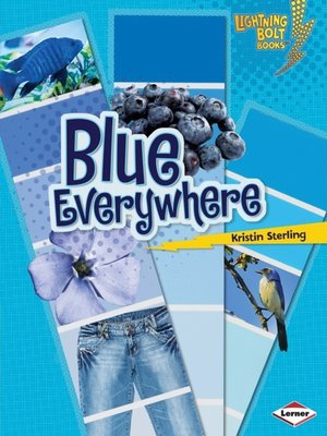 cover image of Blue Everywhere
