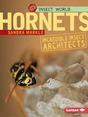 cover image of Hornets