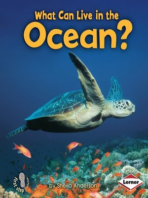 cover image of What Can Live in the Ocean?