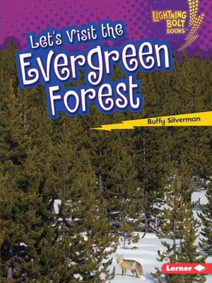 cover image of Let's Visit the Evergreen Forest