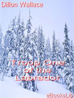 cover image of Troop One of the Labrador