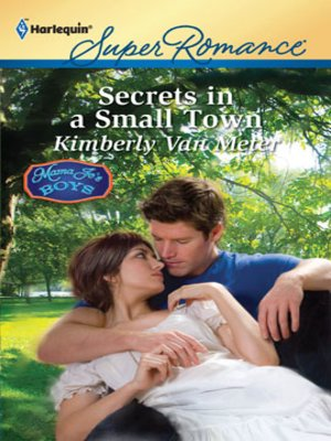 Secrets in a Small Town by Kimberly Van Meter · OverDrive (Rakuten