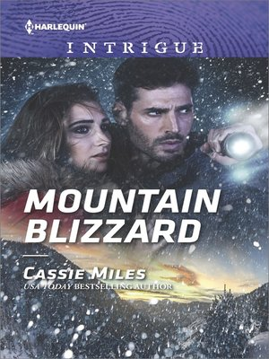 cover image of Mountain Blizzard