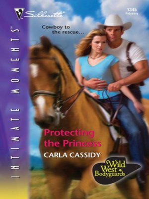 cover image of Protecting the Princess