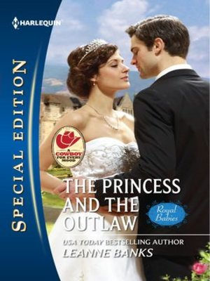 cover image of The Princess and the Outlaw