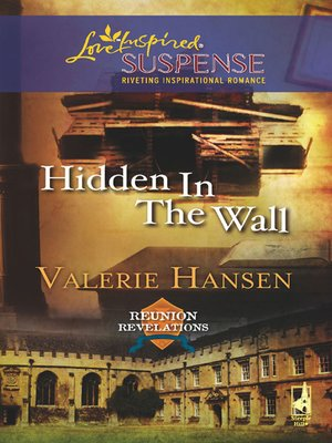 cover image of Hidden in the Wall