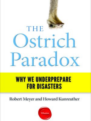 cover image of The Ostrich Paradox