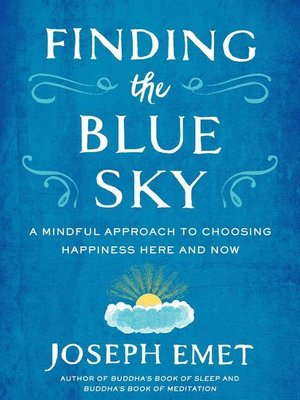 cover image of Finding the Blue Sky