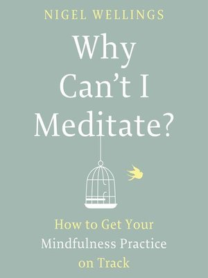 cover image of Why Can't I Meditate?