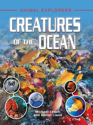 cover image of Creatures of the Ocean