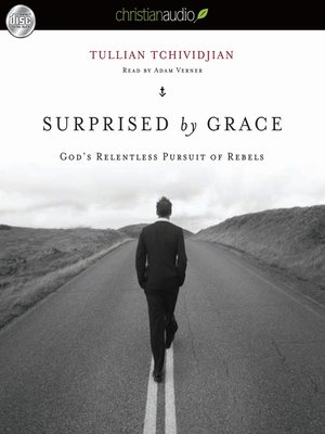 cover image of Surprised by Grace