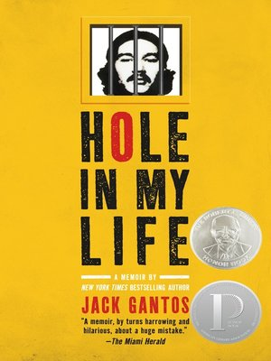 cover image of Hole in My Life