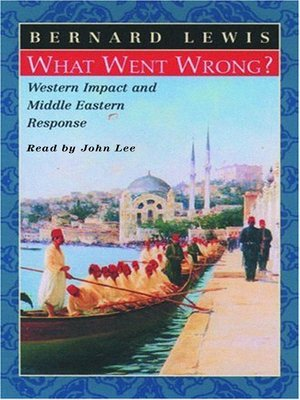 cover image of What Went Wrong?