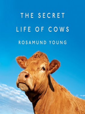 cover image of The Secret Life of Cows