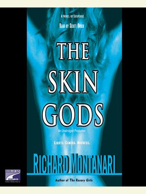 cover image of The Skin Gods