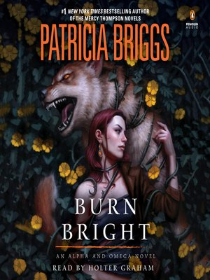 cover image of Burn Bright