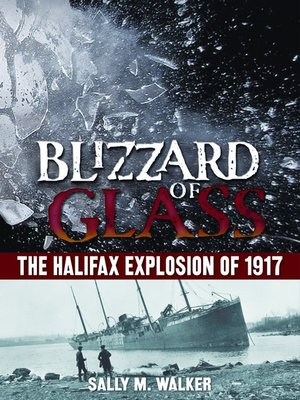 cover image of Blizzard of Glass