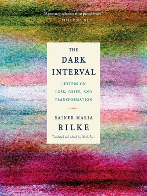 cover image of The Dark Interval