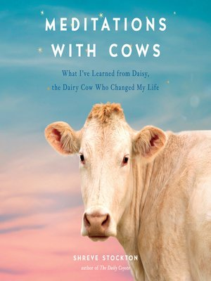 cover image of Meditations with Cows